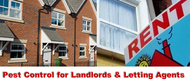 Birmingham Pest Control for Landlords and Lettting Agents